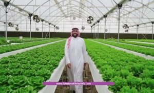 Opportunity of Job Bahrain Farm Work Visa